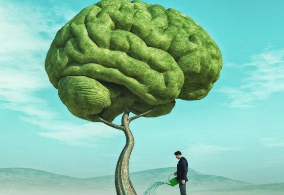 La flexibilité cognitive et la déduction concrète chez la personne autiste