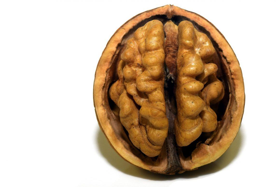 Les biais cognitifs tome 2